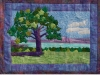 landscape-of-canandaigua-quilted